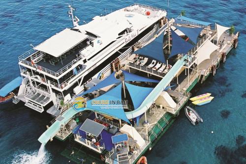 balihai-reef-cruise@balisaritour.com