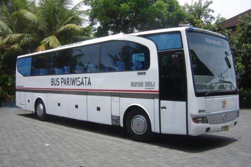 bus 45 seat