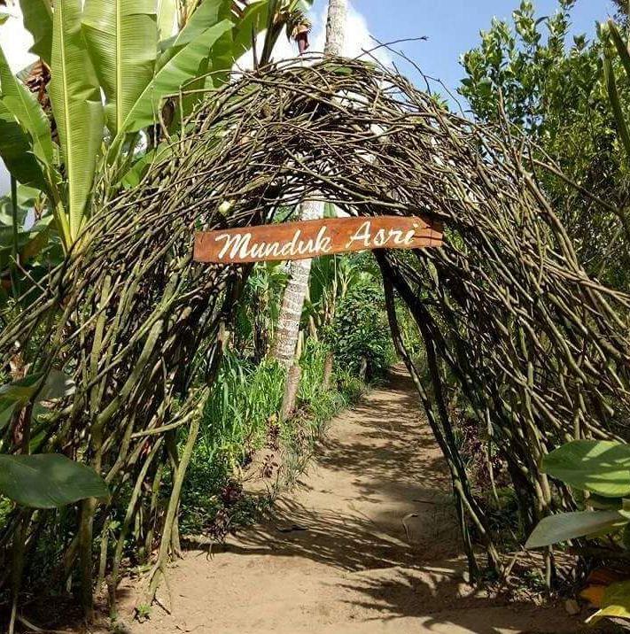 Munduk Asri Salah Satu Objek Wisata Baru Di Gianyar Bali